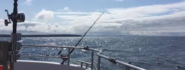 Carraigaholt Sea Angling